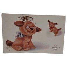 Gorgeous Tubby Dog Postcard  1913 A/F