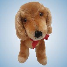 Steiff Bazi Dachshund Puppy , Sitting, 1959 to 1964, Steiff Button