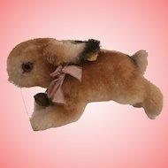 Steiff Hoppy Rabbit, 1965 to 1967, All Id's