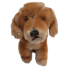 Steiff Bazi Dachshund Dog,  Steiff Button