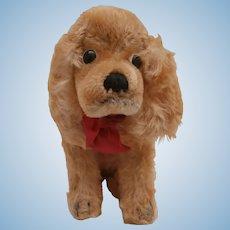 Steiff Revue Susi Cocker Spaniel Dog , 1967 to 1976, Steiff Button