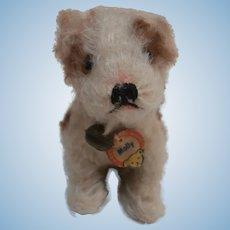 Steiff Molly Puppy Dog,  Steiff Button ,Steiff Chest Tag