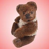Mr Browne, MIniature Steiff Teddy Bear