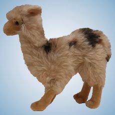 Steiff Lama Llama, 1957 to 1964, No Id's