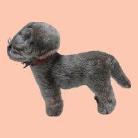 Steiff Raudi Dog, Dachshund,  1965 to 1967, Chest Tag