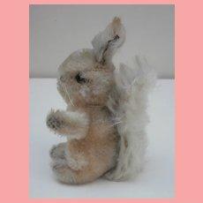 Steiff Possy Squirrel, Steiff Button, 1965 to 1969