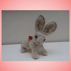Steiff Changeable Rabbit, 1959 to 1964, Steiff Button