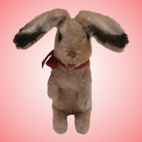 Steiff Manni Bunny Rabbit,1961 to 1964, No Ids'