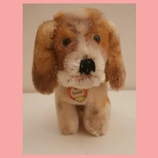 Rare Smallest Size Basset Hound Dog 1961 to 1963, Steiff Button and Chest Tag