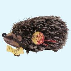 Steiff Joggi Hedgehog 1968 to 1980, Steiff Joggi Chest Tag , Steiff Button