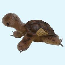 Steiff Slo Tortoise / Turtle 1965 to 1975, Steiff Button