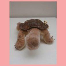 Steiff Larger Slo Tortoise / Turtle 1965 to 1975 , Steiff Button