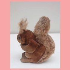 Rare Steiff Velvet Squirrel 1950 to 1956, Steiff Button