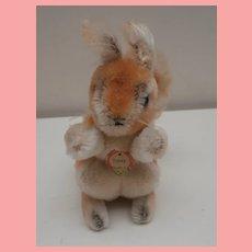 Steiff Possy Squirrel 1965 to 1976, Steiff Chest Tag
