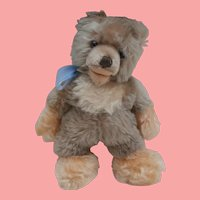 Steiff  Rare Lully Baby Bear No Id's 1961 to 1967, Largest Size