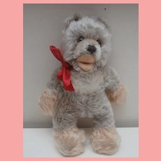 Rare Steiff Lully Baby Bear, Smallest Size, 1966 to 1977, No Id's