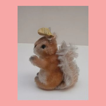 Cute  Steiff Possy Squirrel. Steiff Button, 1965 to 1967