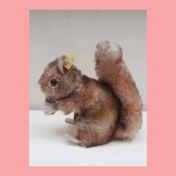 Steiff Perri Squirrel , Steiff Button Walt Disney Movie , Chest Tag, 1965 to 1967