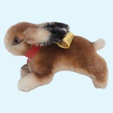 Steiff Hoppy Rabbit, 1968 to 1974, Steiff Button and Chest Tag