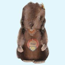 Steiff Nagy Beaver, 1968 to 1978, Steiff Button and Steiff Chest Tag