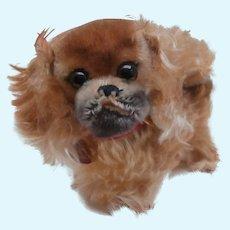 Sweet Steiff Peky Pekingese Dog 1968 to 1972, All Ids