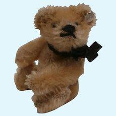 Archibald,  Vintage Steiff Miniature Teddy Bear, Steiff Button