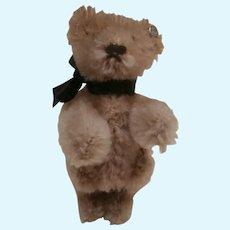 Sam, Vintage Steiff Miniature Teddy Bear, Steiff Button