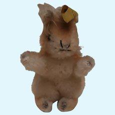Steiff Possy  Squirrel 1965 to 1967, Steiff Button