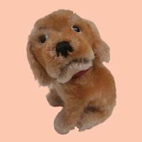 Steiff Revue Susi Cocker Spaniel Dog , 1965 to 1976, No Id's