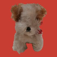 Lovely English Terrier Puppy Dog 1930/40