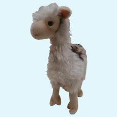 Gorgeous Steiff Llama, Lama, 1957 to 1964, No Id's
