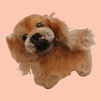Steiff Peky Pekingese Dog,. 1959 to 1964, Steiff Button .