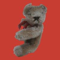 Steiff Miniature Flexible  Original Teddy Bear 1966 to 1967, Steiff Button