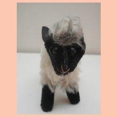Steiff Small Snucki, Mountain Sheep,No Id's, 1965 to 1976.