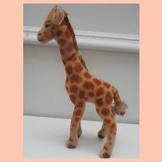 Steiff Giraffe, No Id's, 1959 to 1964