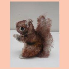 Smallest Size Steiff Perri Squirrel, No Id's , 1965 to 1970