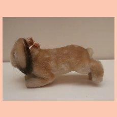 Steiff Hoppy Bunny Rabbit,1959 to 1964, Steiff Button