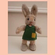 Gorgeous Steiff Ossili Rabbit, Original Apron Working Squeaker and Steiff Button, 1962 to 1964