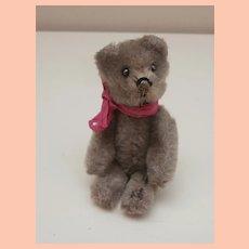 Gwen, Lovely Vintage  Schuco Miniature Teddy Bear