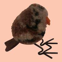 Tiny Steiff Pompom Woolen Bird 1949 to 1956 , No Id's