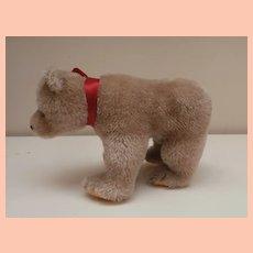 Lovely Steiff Bear Cub, Steiff Button, 1965 to 1970