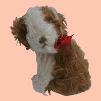 Sweet  Vintage English Toy Terrier Type Dog