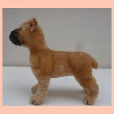 Steiff Saras Boxer Dog, 1966 to 1970, No Id's