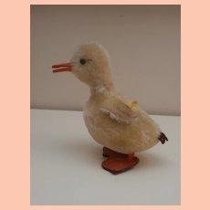 Steiff Duck ,1968 to 1976. with Steiff Button