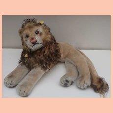 Wonderful Steiff Leo Lion 1959 to 1964, Steiff Button and Chest Tag