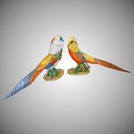 Art Deco Pair of Italian Majolica Hand Painted Pheasant  ~ Ugo Zaccagnini Trademark