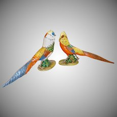 Pair of Italian Hand Painted Pheasant