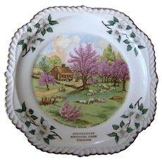 Currier & Ives Souvenir Plate - Shenandoah National Park, VA - Dogwood Border - Spring