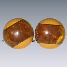 1950's Lucite Earrings with Embedded Flowers - Screwback