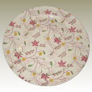 """Taylor Smith Taylor (TS & T) Chelsea Chintz 10"""" Dinner Plate - 1940's"""